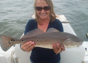 Lady holding up a pretty spotted red drum.